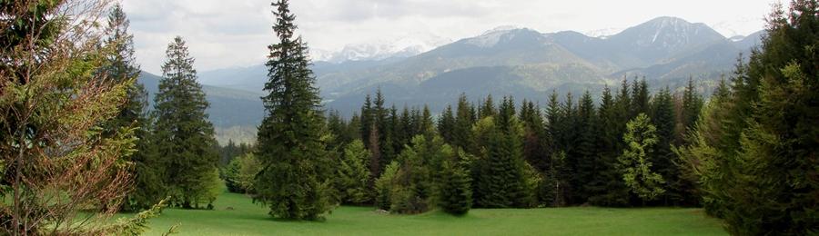 Panoráma Západných Tatier sponad Oravíc
